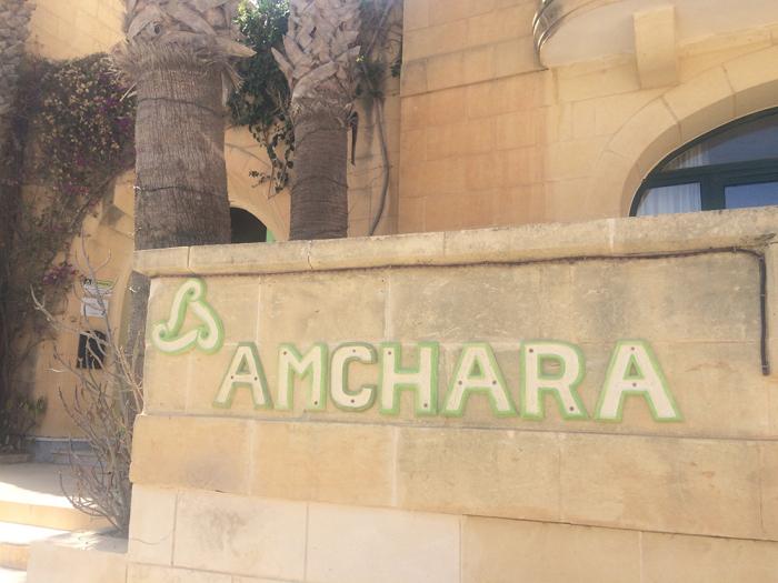 amchara-detox.jpg