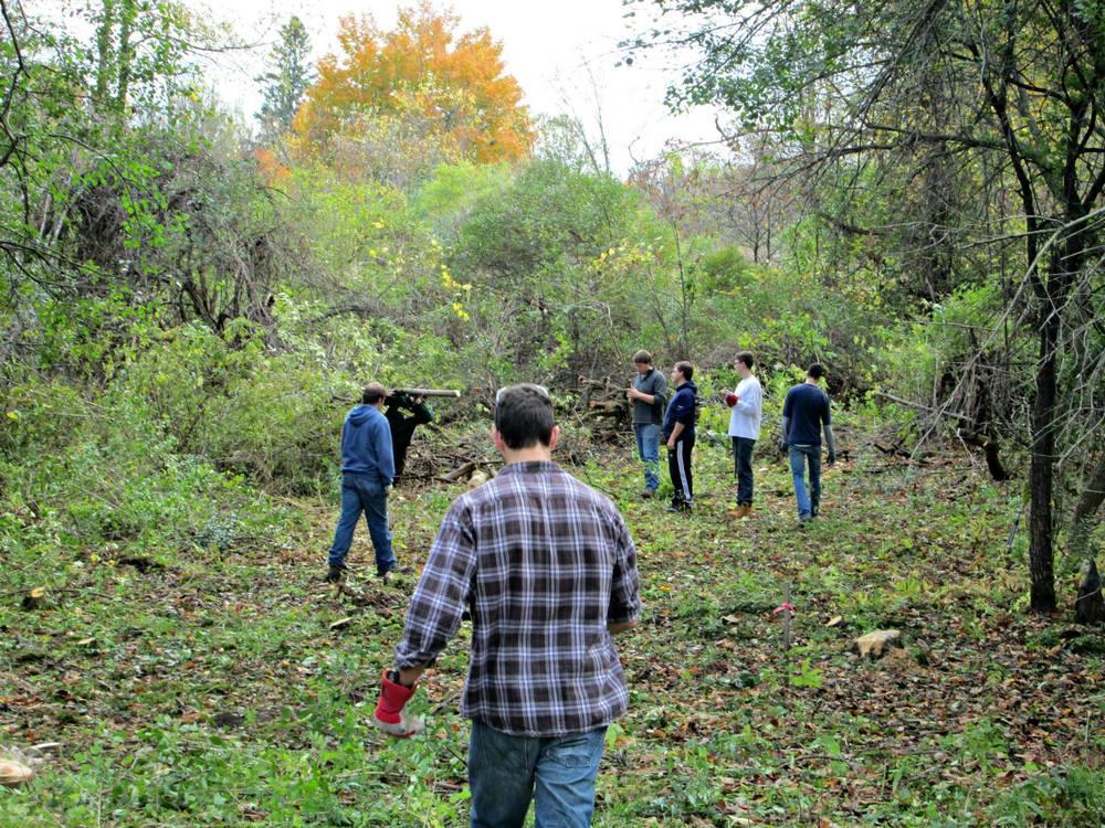 More volunteers helping clean the park