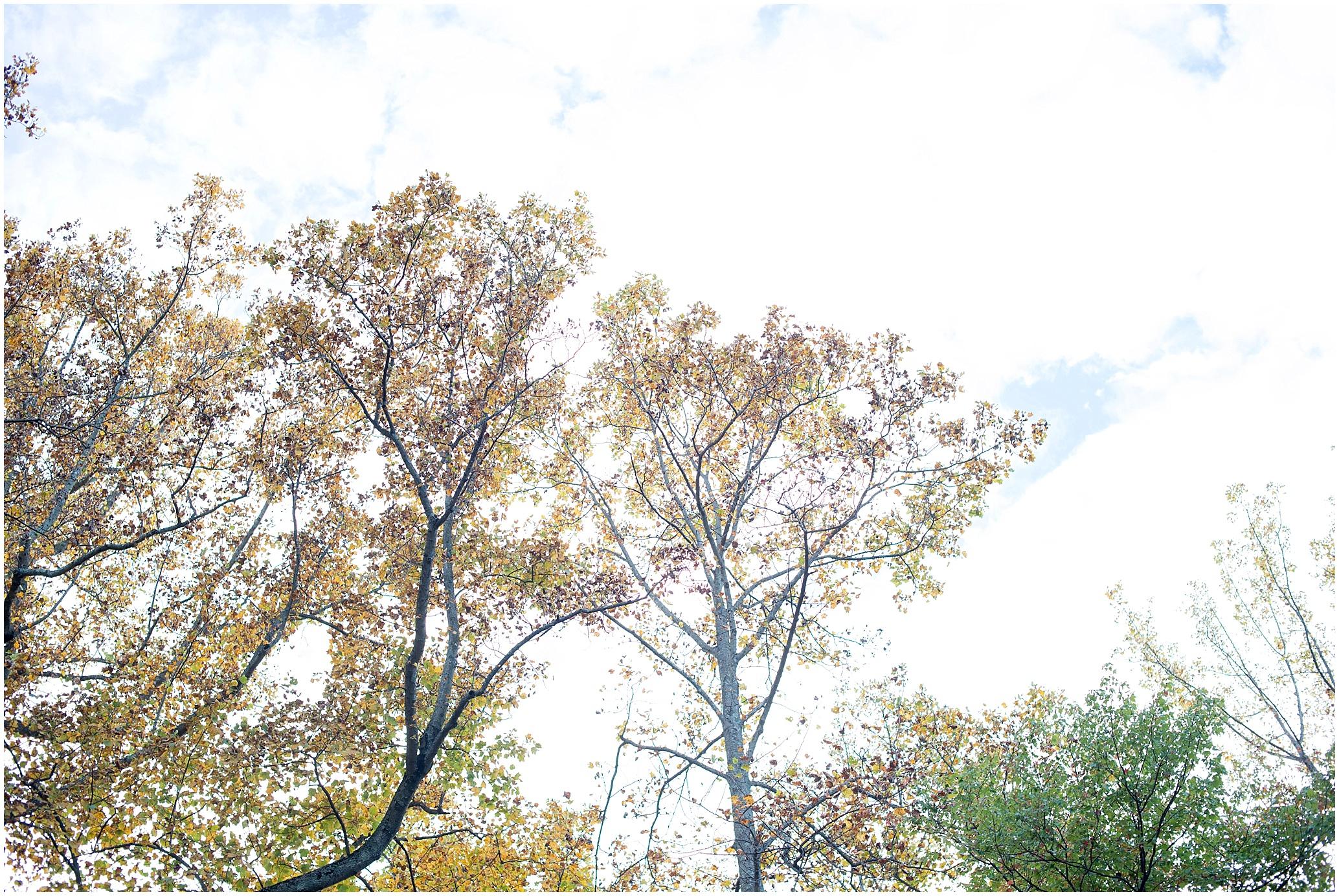2015-10-21_0001