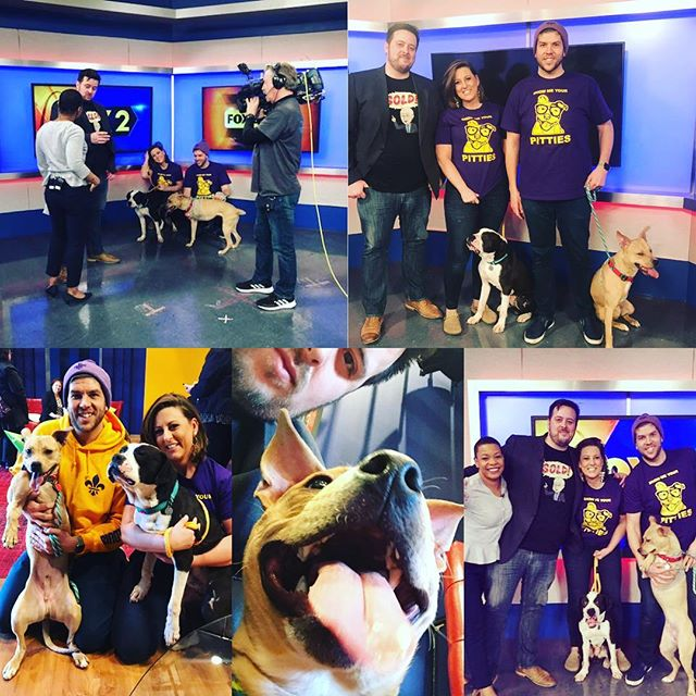 Cliff, Beetlejuice, @jaypippi , @stl_phodographer , & @instadenman had the pleasure of stopping by @fox2now on Friday with @kimhudsontv - they were chatting about the Paw-Oscars this Sunday at @1860soulard immediately following the @purina pet parade. Bring your dog, have them compete for 2019 Paw-Oscars 🐶🏆 Best Dressed  Best Actor  Best Hair  Best Strut  Miss / Mr Congeniality  Lifetime Achievement  Best Duo (dog/owner look a like) Tiniest Performer  Biggest Performer  Best Stunt Double (dog that resembles a celebrity dog the most, as decided by our judges) #stl #soulard #dogs #gatewaypetguardians #dogparade #pawoscars #1860saloon #mardigras #stlouisonly #goodtimes #cityofstlouis #rescuedog #frenchbulldog #pitbull #dogsofinstagram #rottweiler #labradoodle #mutt #dachsundsofinstagram #americanbulldog #wearelive #instadog #instafun #missouri #showmeyourpitties