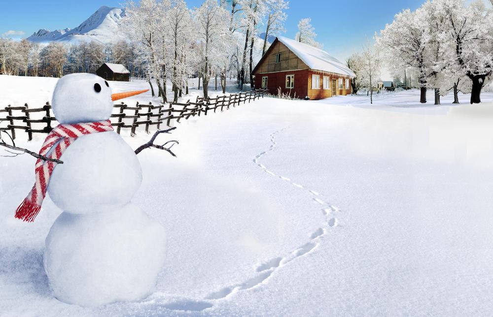 Bob Evans winter