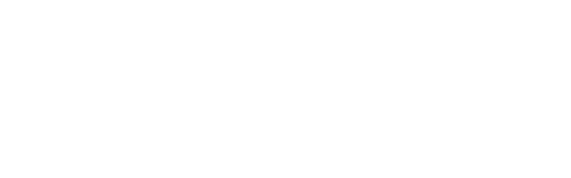 Stoney Miller Consultants, Inc.
