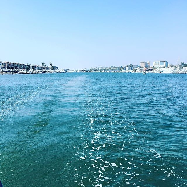#sailaway #newportharbor #ahoy