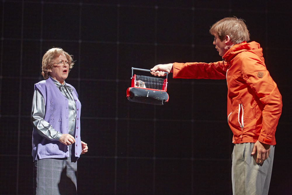 As Mrs Alexander in The Curious Incident of the Dog in the Night Time
