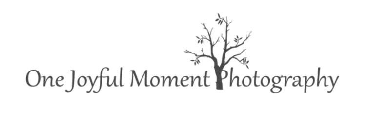 One Joyful Moment Photography