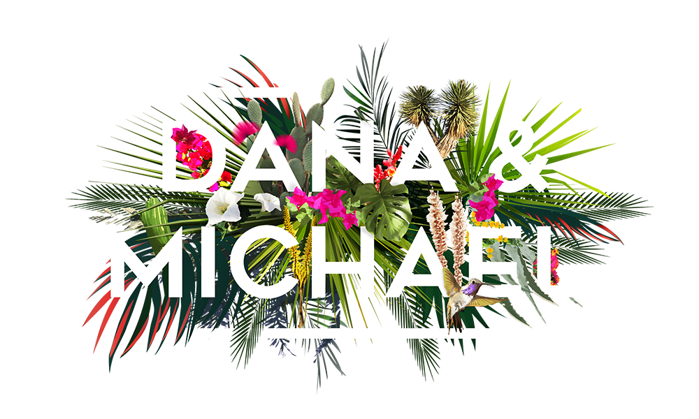 dana and michael