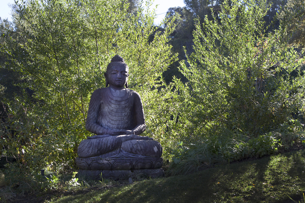 Silent backyard garden retreat area meditation garden with Buddha statue - Topanga Canyon - Los Angeles garden design by Campion Walker Landscapes