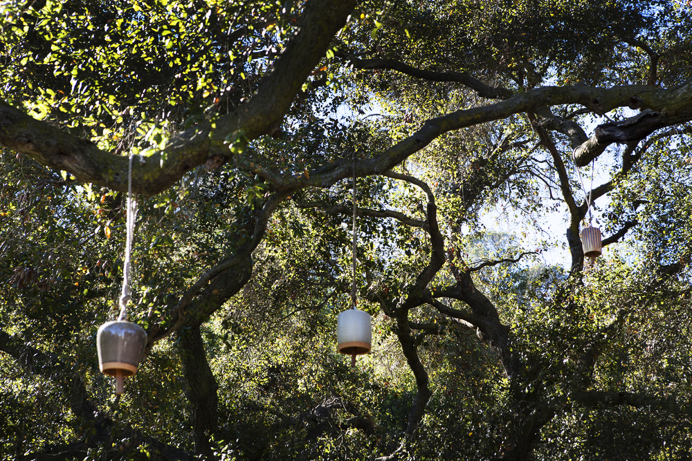 Ceramic bells hanging from california native oak trees - Topanga Canyon - Los Angeles garden design by Campion Walker Landscapes
