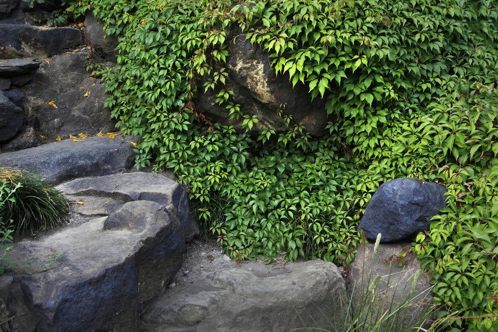 Custom design split face boulder steps in rustic modern front backyard - Topanga Canyon - Los Angeles garden design by Campion Walker Landscapes
