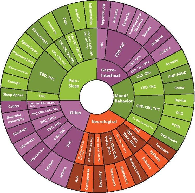 Cannabinoid copy-page-001.jpg