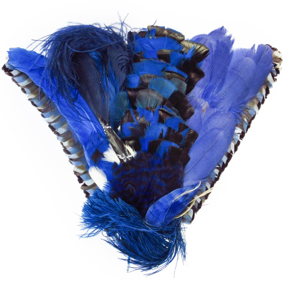 Plumes bleu royal