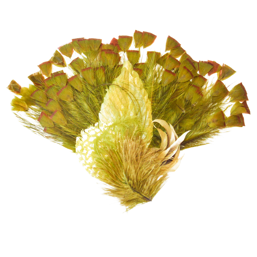 Kaki feathers
