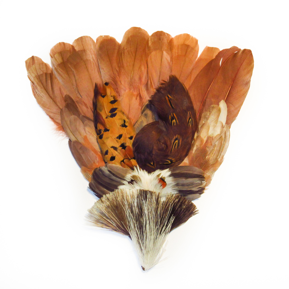 Copper orange feathers
