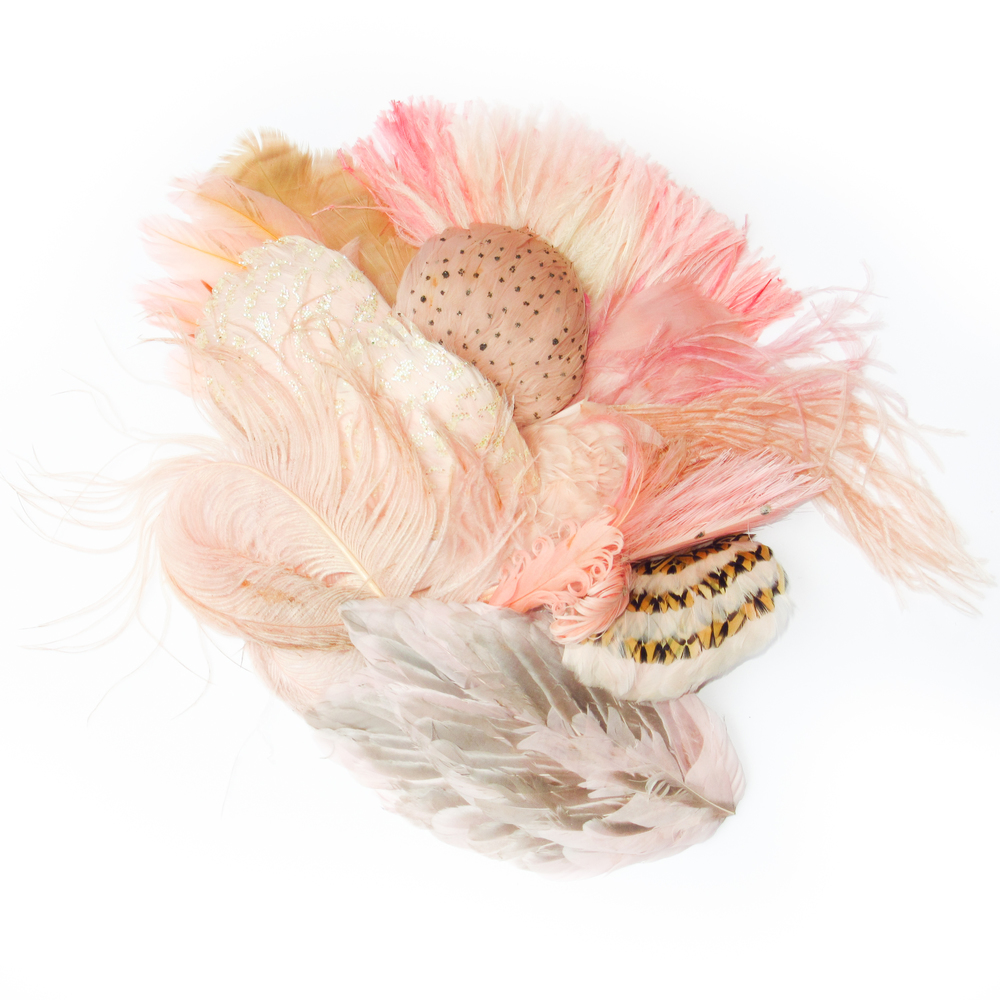 Light pink feathers