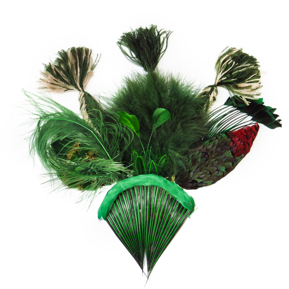 Forest green feathers