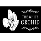 Copy of The White Orchid