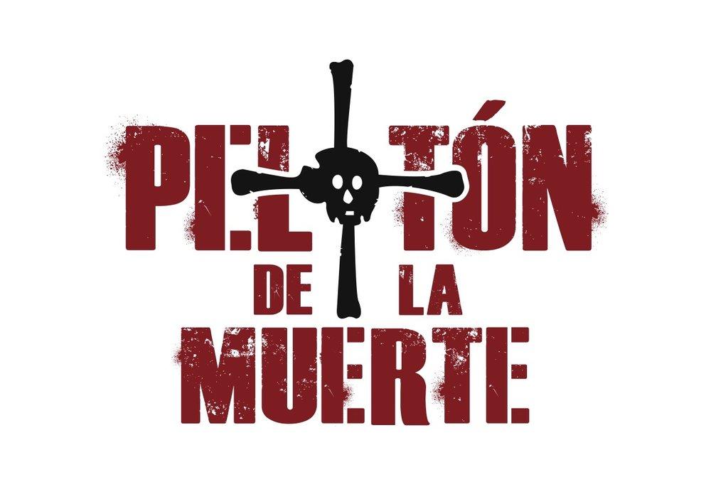 Logo PDM.jpg