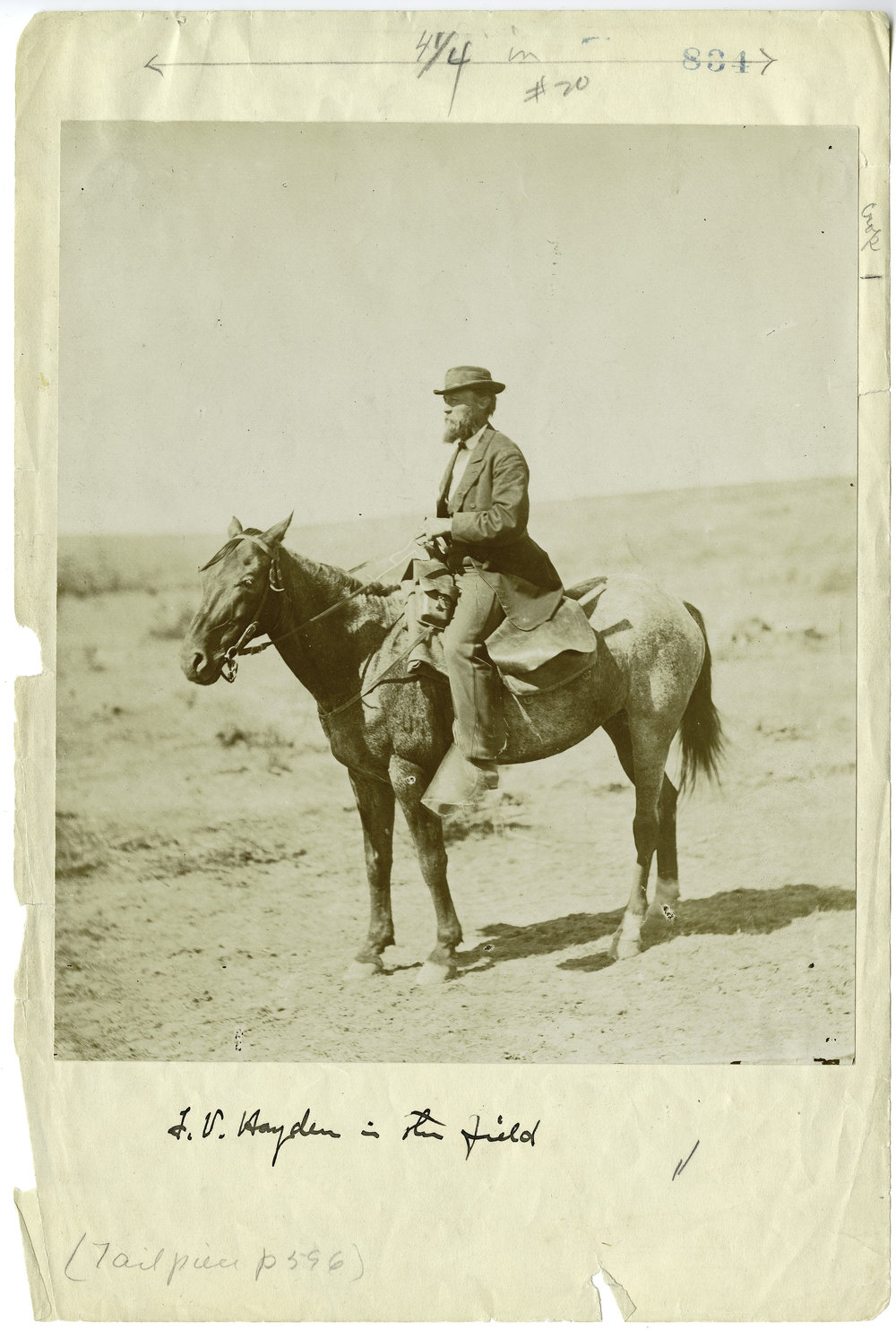 Ferdinand Vandeveer Hayden (1829-1887), the Collection of the Smithsonian Institution Archives