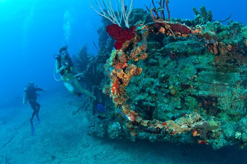 wreck-of-the-rms-rhone-coast-of-salt-island-near-tortola-british-virgin-islands.jpg