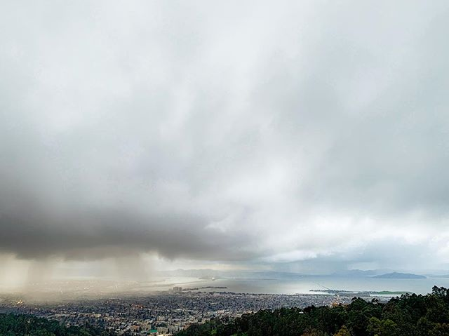 After the rain came . . . .  #rain #stormclouds #sanfrancisco #sfbayarea #bayarea #bayareaphotography #landscape #landscapephotography #oakland #berkeley #tildenregionalpark #california #stormphotography