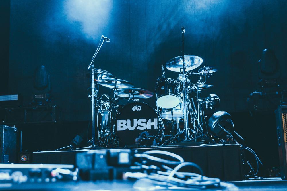 Bush-19.jpg