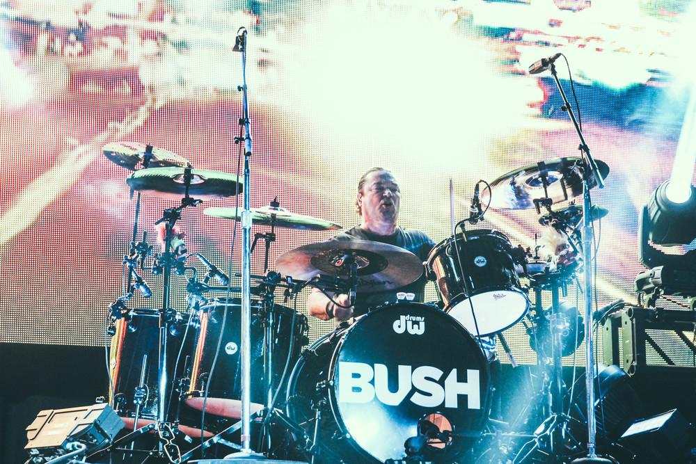 Bush-39.jpg