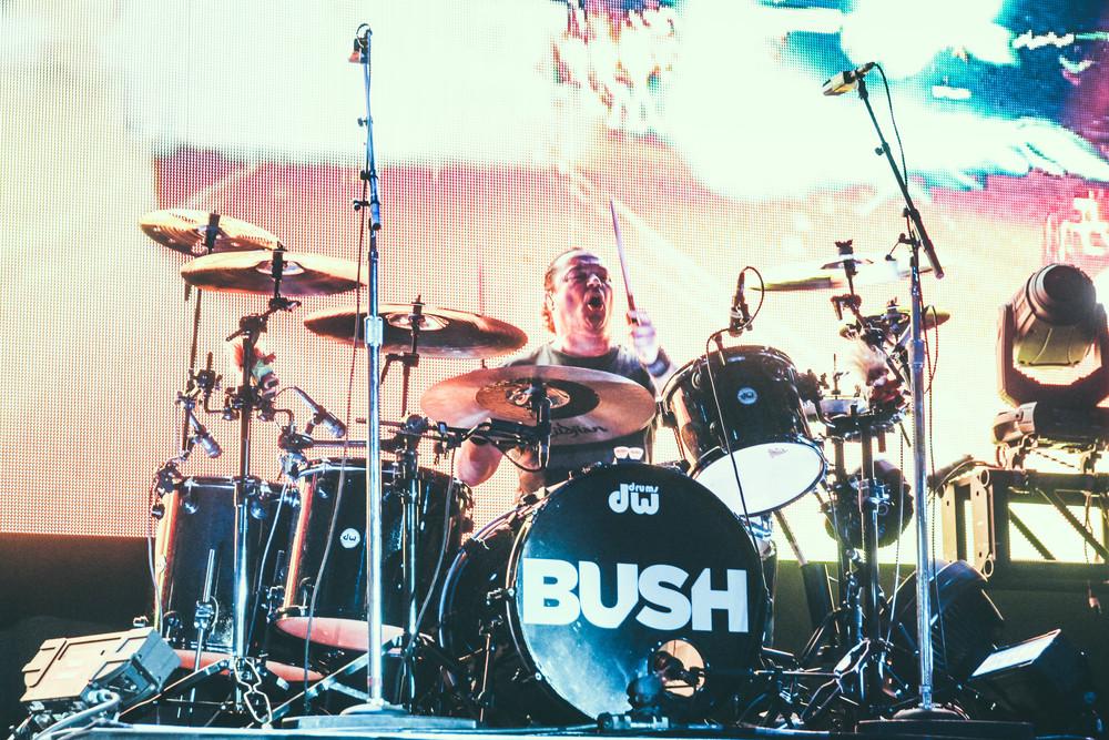 Bush-40.jpg
