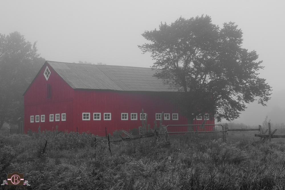 Kricklewood Farm - Frankville, Ontario