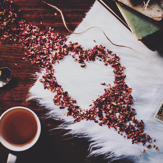 You are my cup of tea 😘☕️Happy Valentine's Day, Loves! 💫💕 Photo Credit: the creatively original @cfunk44. 📷🙌🏽 #valentinesday #loveistea #rosehips #love #mwah