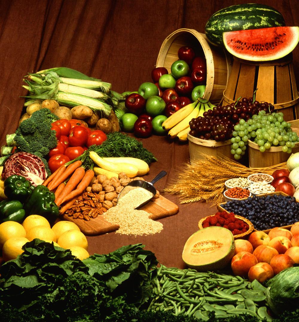 Foods_cropped.jpg
