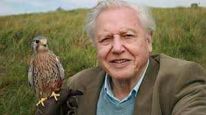 davidattenborough1.jpg