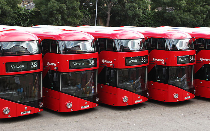 nbfl-row-of-buses.jpg