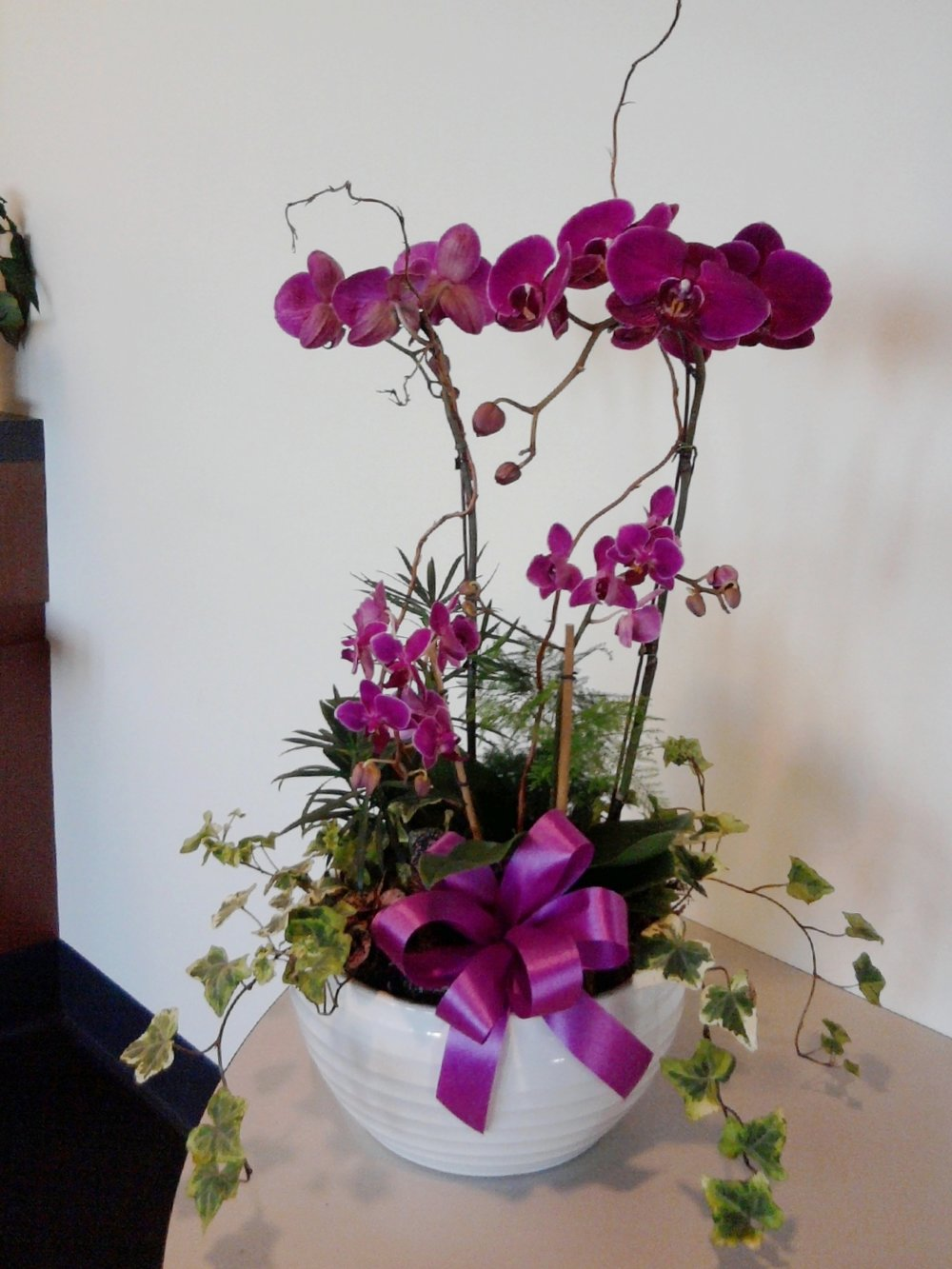 Four Orchid Planter
