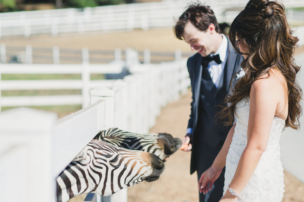 MERYL + DEREK - Saddlerock Ranch, Malibu