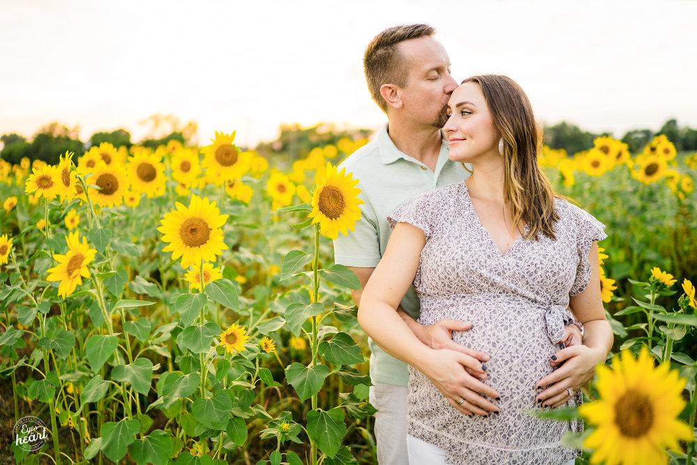Cottell-Park-Sunflower-Field-Maternity-Photography-3.jpg