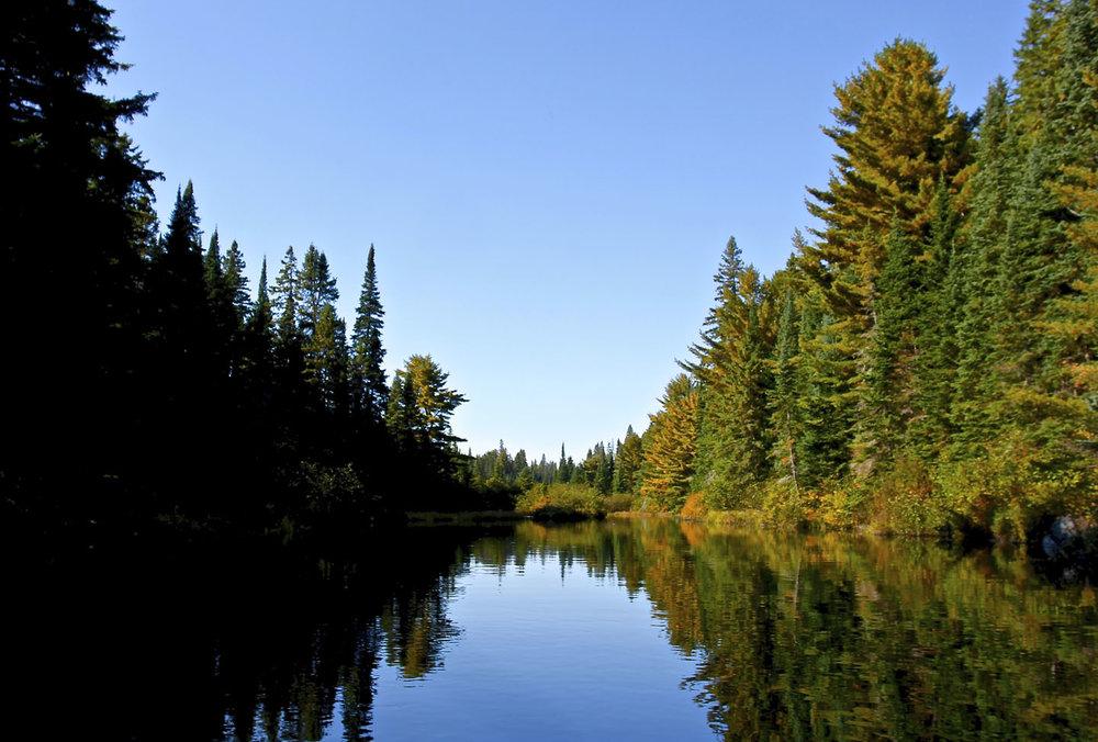Algonquin Provincial Park, Ontario | 2014