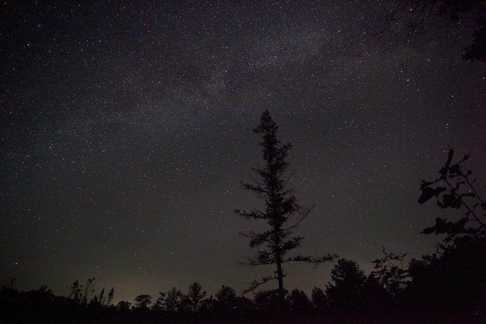 Torrance Barrens Dark Sky Preserve, Ontario | 2017