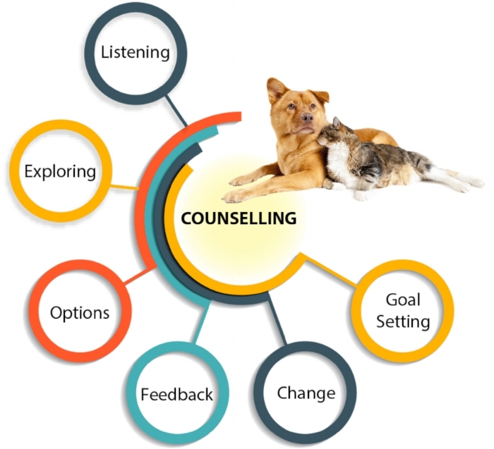 Counselling Service Diagram