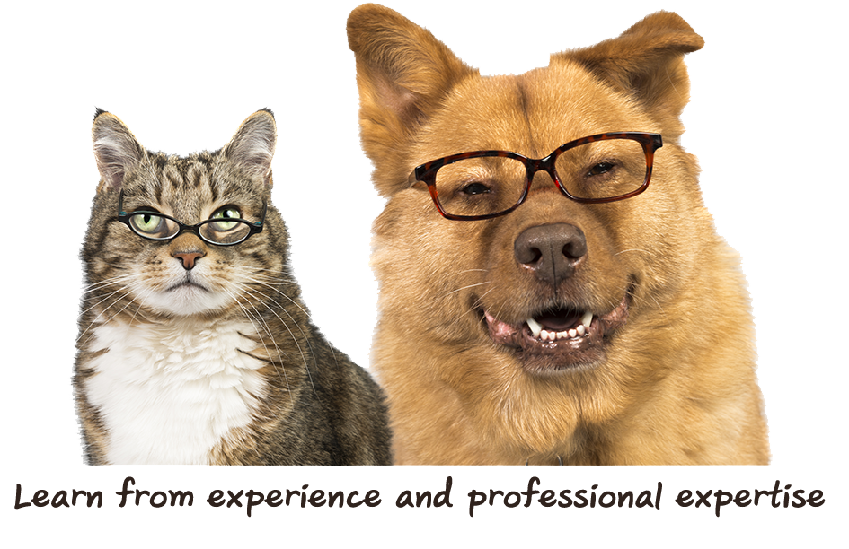 Dog&Cat-Professional.png
