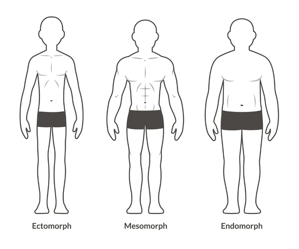 bigstock-Male-Body-Type-Chart-116519240.jpg