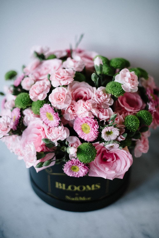 Blooms_By_NadiMor-6.jpg