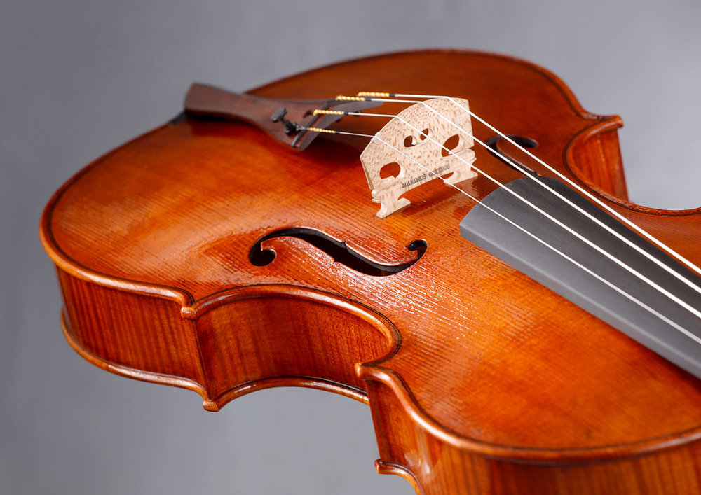 Marinos Glitsos Viola_0718  08-XL.jpg