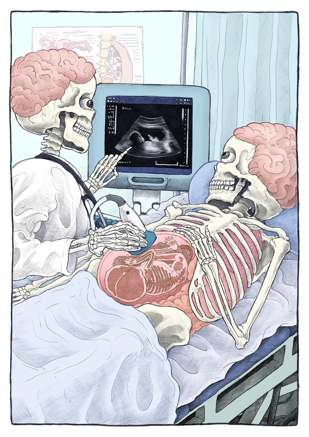 Bare Bones - Ultrasound.jpg