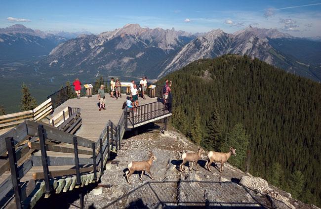 Banff-Gondola-01_0