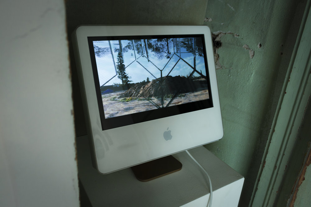 consumeorbeconsumed (installation view)