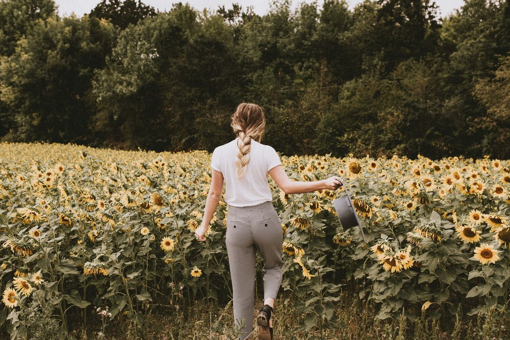 samlandreth-sun flowers-2.jpg