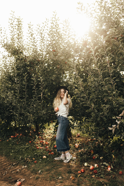 samlandreth-apples-4.jpg