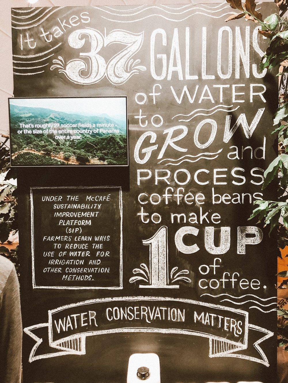 water-to-grow-coffee