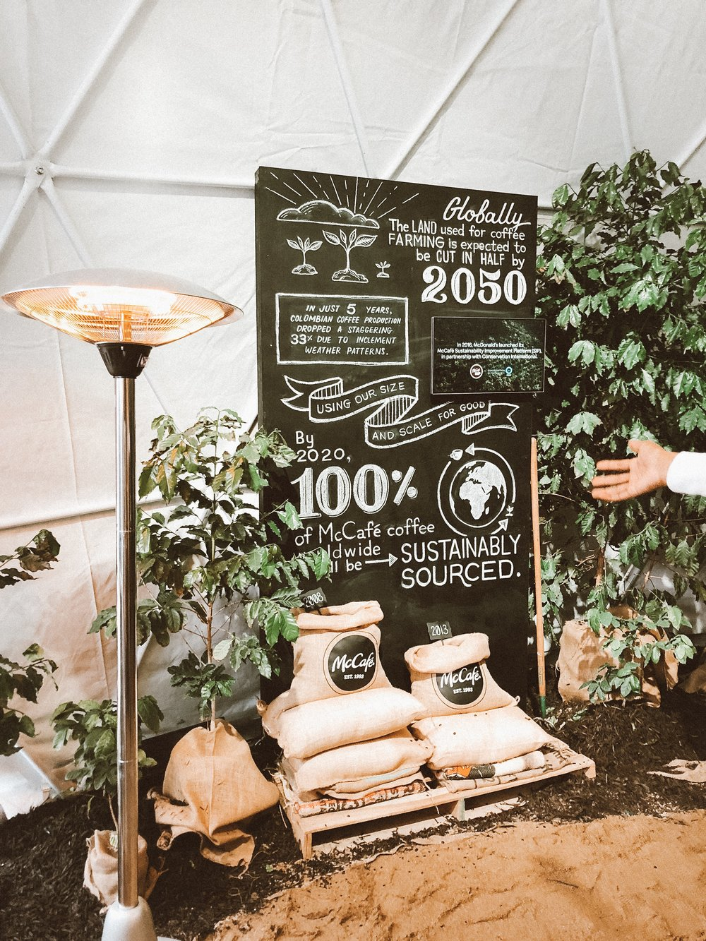 sustainable-coffee-chicago