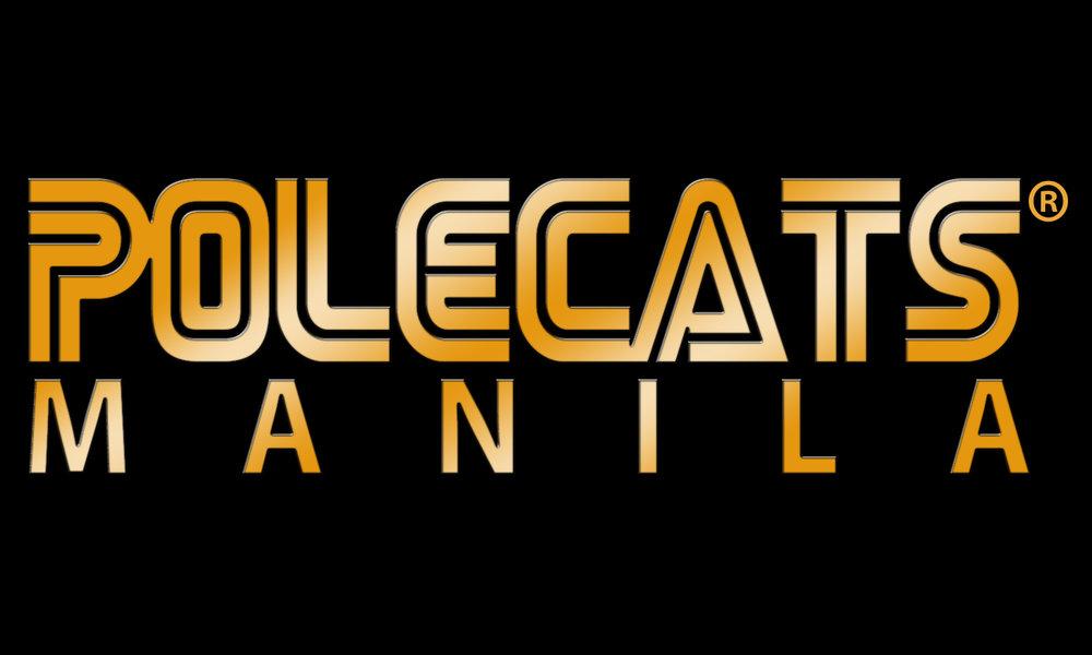 Polecats2013.jpg